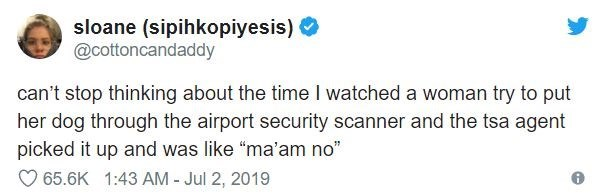 """airport tweet - Text - sloane (sipihkopiyesis) @cottoncandaddy can't stop thinking about the time I watched a woman try to put her dog through the airport security scanner and the tsa agent picked it up and was like """"ma'am no"""" 65.6K 1:43 AM - Jul 2, 2019"""