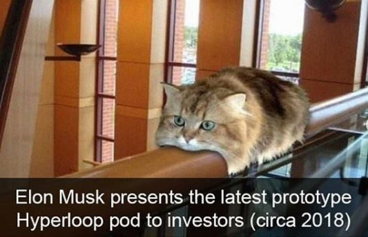 Cat - Elon Musk presents the latest prototype Hyperloop pod to investors (circa 2018)