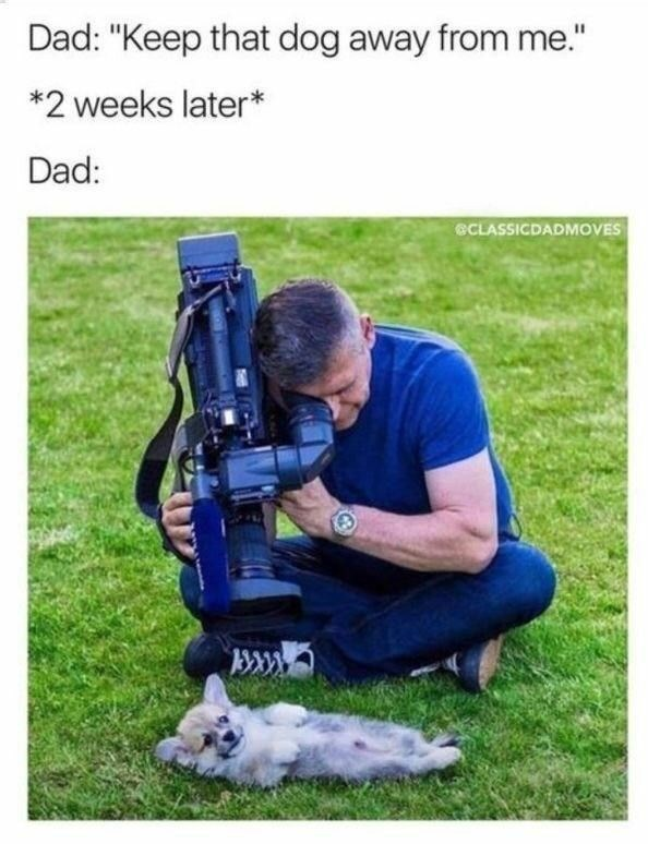 """Product - Dad: """"Keep that dog away from me."""" *2 weeks later* Dad: CLASSICDADMOVES"""