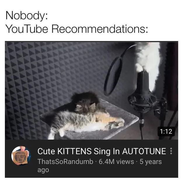 Text - Nobody: YouTube Recommendations: 1:12 Cute KITTENS Sing In AUTOTUNE ThatsSoRandumb 6.4M views 5 years ago