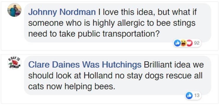 bees bus stop - Text - Johnny Nordman I love this idea, but what if someone who is highly allergic to bee stings need to take public transportation? 92 GBAKS Clare Daines Was Hutchings Brilliant idea should look at Holland no stay dogs rescue all cats now helping bees. 13