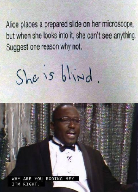 meme - Text - Alice places a prepared slide on her microscope, but when she looks into it, she can't see anything Suggest one reason why not. She is blind WHY ARE YOU BOOING ME? I'M RIGHT