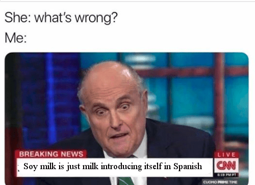 meme - News - She: what's wrong? Me: BREAKING NEWS Soy milk is just milk introducing itself in Spanish LIVE CAN CUOHO PETIME