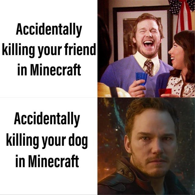 meme - People - Accidentally killing your friend in Minecraft Accidentally killing your dog in Minecraft