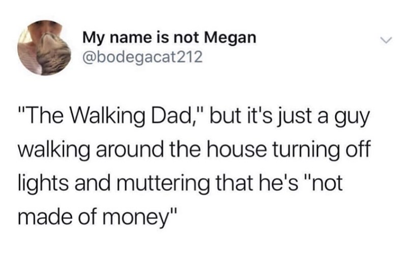 "middle class - Text - My name is not Megan @bodegacat212 ""The Walking Dad,"" but it's just a guy walking around the house turning off lights and muttering that he's ""not made of money"""