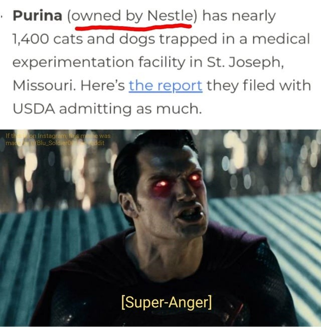 memes - Text - Purina (owned by Nestle) has nearly 1,400 cats and dogs trapped in a medical experimentation facility in St. Joseph, Missouri. Here's the report they filed with USDA admitting as much. If th ma on Instagram,smahe was Blu Soldiero dit [Super-Anger]