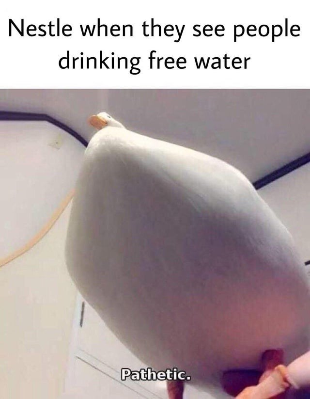 memes - Plant - Nestle when they see people drinking free water Pathetic.