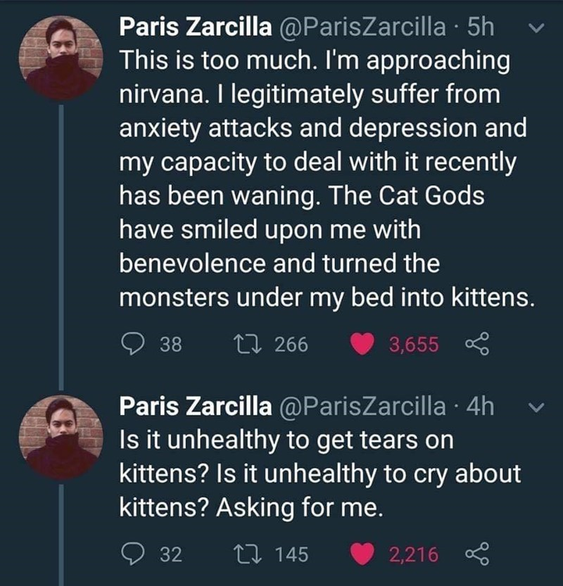 Text - Paris Zarcilla @ParisZarcilla 5h This is too much. I'm approaching nirvana. I legitimately suffer from anxiety attacks and depression and my capacity to deal with it recently has been waning. The Cat Gods have smiled upon me with benevolence and turned the monsters under my bed into kittens. L 266 38 3,655 Paris Zarcilla @ParisZarcilla 4h Is it unhealthy to get tears on kittens? Is it unhealthy to cry about kittens? Asking for me. 2 145 32 2,216