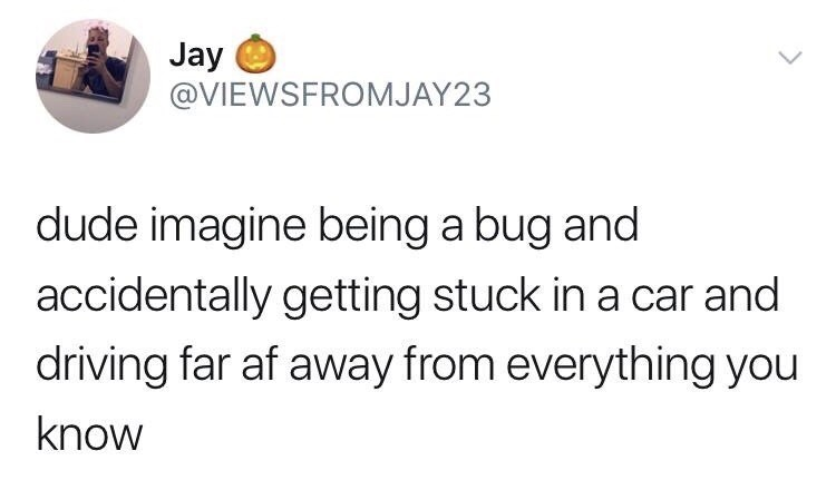 Text - Jay @VIEWSFROMJAY23 dude imagine being a bug and accidentally getting stuck in a car and driving far af away from everything you know