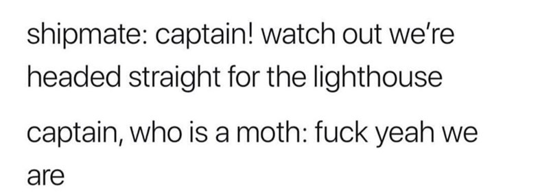 Text - shipmate: captain! watch out we're headed straight for the lighthouse captain, who is a moth: fuck yeah we are