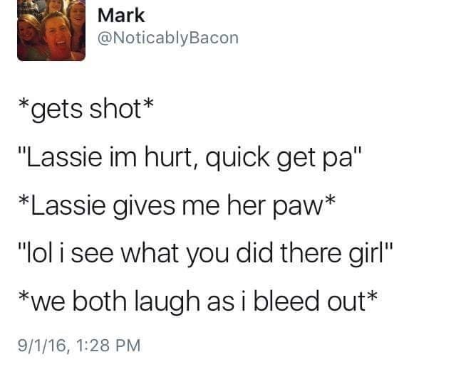 """Text - Mark @NoticablyBacon *gets shot* """"Lassie im hurt, quick get pa"""" *Lassie gives me her paw* """"lol i see what you did there girl"""" *we both laugh as i bleed out* 9/1/16, 1:28 PM"""