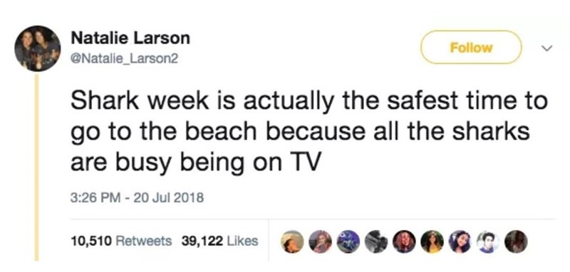 Text - Natalie Larson Follow @Natalie_Larson2 Shark week is actually the safest time to go to the beach because all the sharks are busy being on TV 3:26 PM - 20 Jul 2018 10,510 Retweets 39,122 Likes
