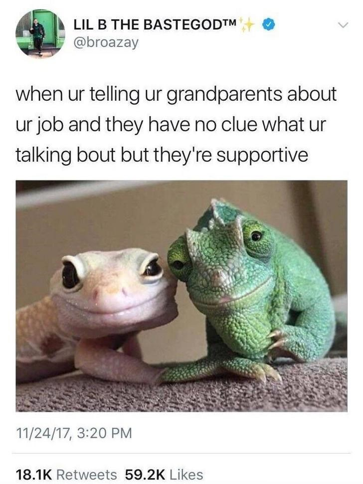 cute reptiles Memes funny - 9332713216