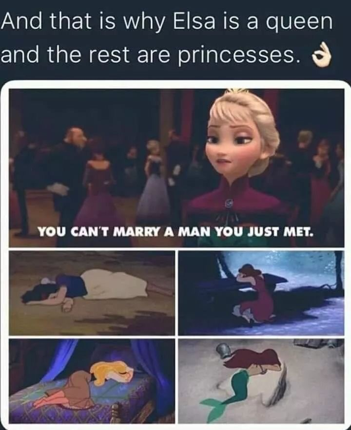 Text - And that is why Elsa is a queen and the rest are princesses. YOU CAN'T MARRY A MAN YOU JUST MET.