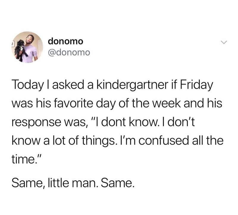 "Text - donomo @donomo Today I asked a kindergartner if Friday was his favorite day of the week and his response was, ""I dont know. I don't know a lot of things. I'm confused all the time."" Same, little man. Same."