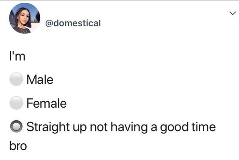 Text - @domestical I'm Male Female Straight up not having a good time bro