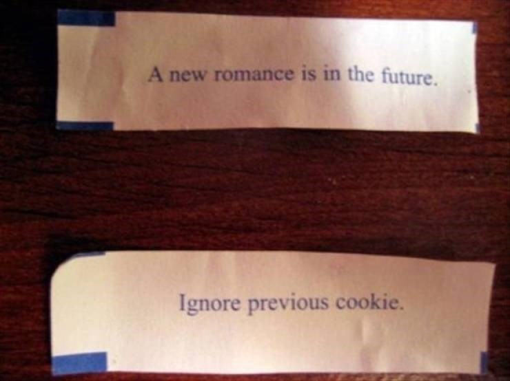 sad meme - Text - A new romance is in the future. Ignore previous cookie.