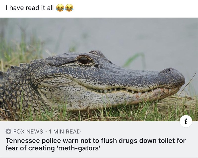 Alligator - T have read it all i FOX NEWS 1 MIN READ . Tennessee police warn not to flush drugs down toilet for fear of creating 'meth-gators'