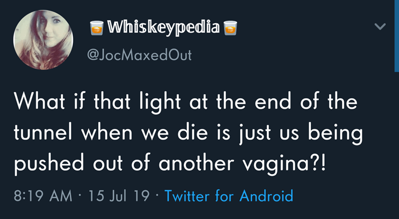 Text - |Whiskeypedia @JocMaxedOut What if that light at the end of the tunnel when we die is just being US pushed out of another vagina?! 8:19 AM 15 Jul 19 Twitter for Android