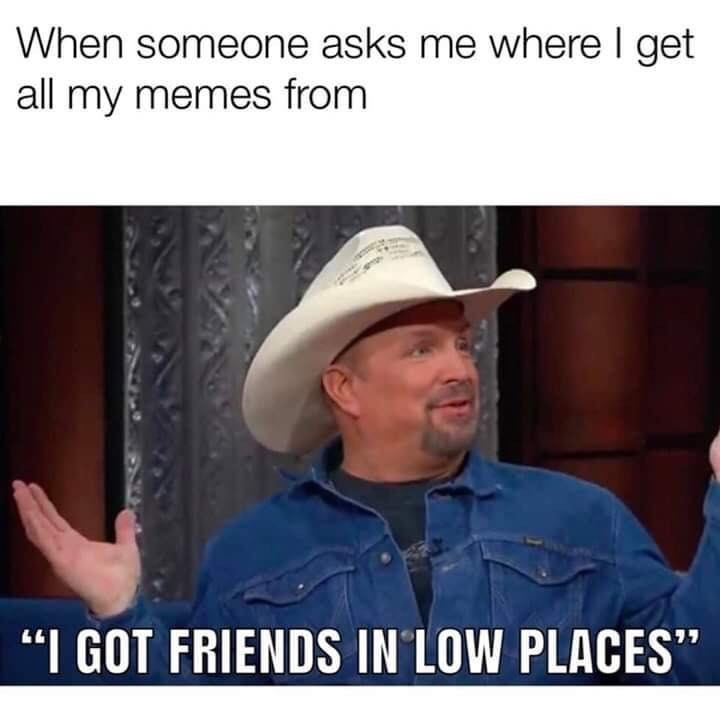 "Photo caption - When someone asks me where I get all my memes from ""I GOT FRIENDS IN LOW PLACES"""
