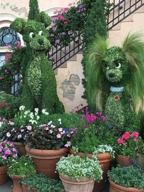 animal pic - Botanical garden
