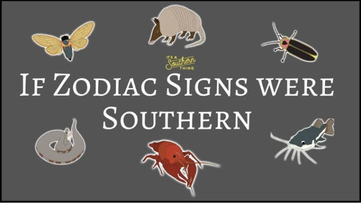 animal zodiac - Text - Southern THING IF ZODIAC SIGNS WERE SOUTHERN
