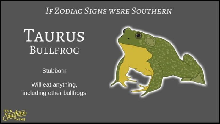 animal zodiac - Frog - IF ZODIAC SIGNS WERE SOUTHERN TAURUS BULLFROG Stubborn Will eat anything, including other bullfrogs ITS A Seurhern THING