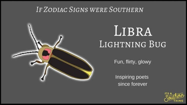 animal zodiac - Insect - IF ZODIAC SIGNS WERE SOUTHERN LIBRA LIGHTNING BUG Fun, flirty, glowy Inspiring poets since forever ITS A Southern THING