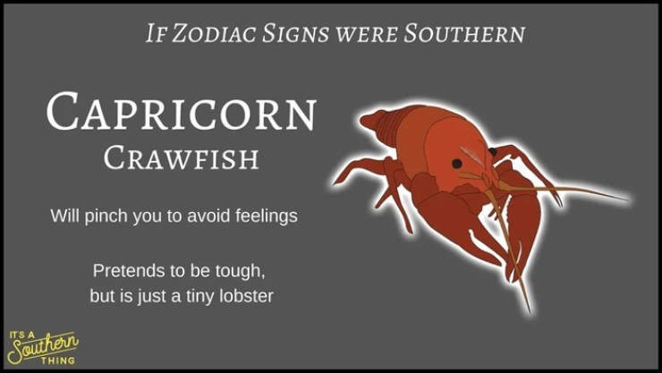 animal zodiac - Organism - IF ZODIAC SIGNS WERE SOUTHERN CAPRICORN CRAWFISH Will pinch you to avoid feelings Pretends to be tough, but is just a tiny lobster IT'S A SOutherr THING