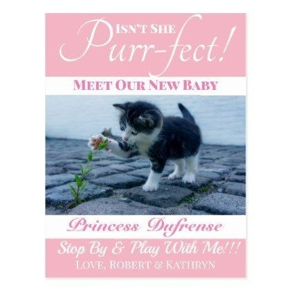 Pregnancy announcement - Canidae - ISNT SHE urr-fect! MEET OUR NEW BABY Princess Duffrense Stop By&Pla With Me!!! LOVE, ROBERT& KATITRYN