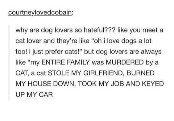 """Text - courtneylovedcobain: why are dog lovers so hateful??? like you meet a cat lover and they're like """"oh i love dogs a lot too! i just prefer cats!"""" but dog lovers are always like """"my ENTIRE FAMILY was MURDERED by a CAT, a cat STOLE MY GIRLFFRIEND, BURNED MY HOUSE DOWN, TOOK MY JOB AND KEYED UP MY CAR"""