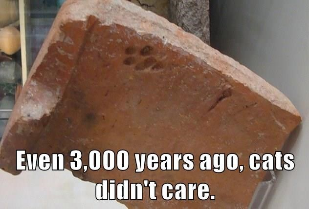 Brick - Even 3,000 years ago, cats didn't care.