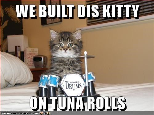 Cat - WE BUILT DIS KITTY ADRIAN MO DRIUM'S FINGER ON TUNA ROLLS OCANHASCHEE2BURGERO0M