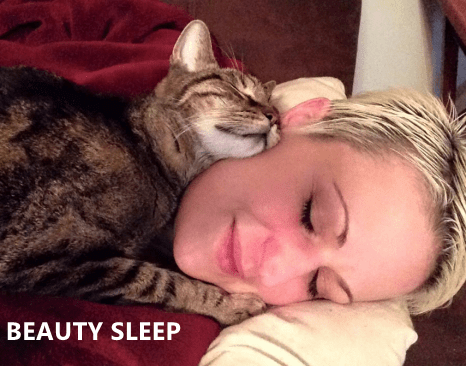 Cat - BEAUTY SLEEP