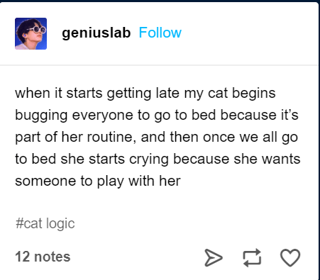 Text - geniuslab Follow when it starts getting late my cat begins bugging everyone to go to bed because it's part of her routine, and then once we all go to bed she starts crying because she wants someone to play with her #cat logic 12 notes