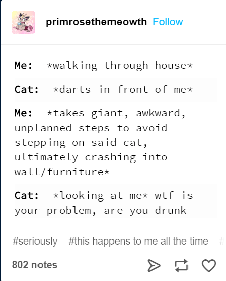 Text - primrosethemeowth Follow walking through house Me: *darts in front of me Cat: *takes giant, awkward, Me: unplanned steps to avoid stepping on said cat, ultimately crashing into wall/furniture* *looking at me wtf is your problem, are you drunk Cat: #seriously #this happens to me all the time 802 notes