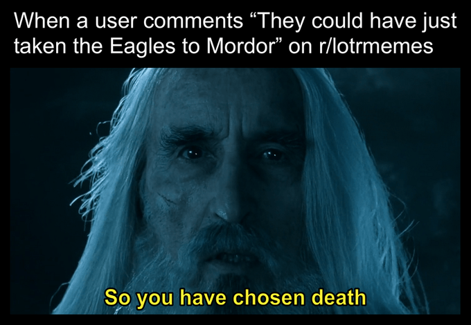 "saruman - Text - When a user comments ""They could have just taken the Eagles to Mordor"" on r/lotrmemes So you have chosen death"
