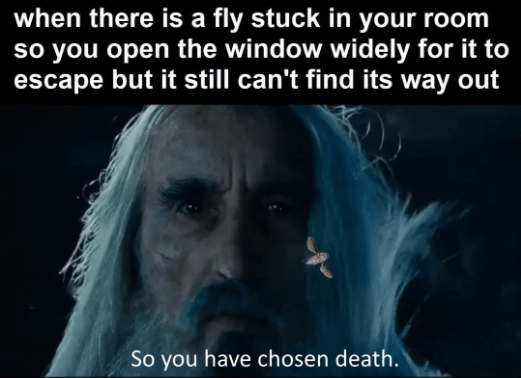 saruman - Text - when there is a fly stuck in your room so you open the window widely for it to escape but it still can't find its way out So you have chosen death.