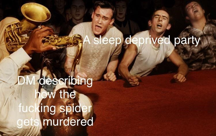 Music - A sleep deprived party DM describing how the fucking spider gets murdered
