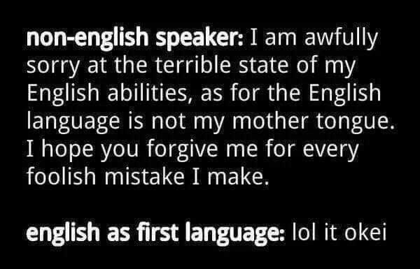 Text - non-english speaker: I am awfully sorry at the terrible state of my English abilities, as for the English language is not my mother tongue. I hope you forgive me for every foolish mistake I make, english as first language: lol it okei