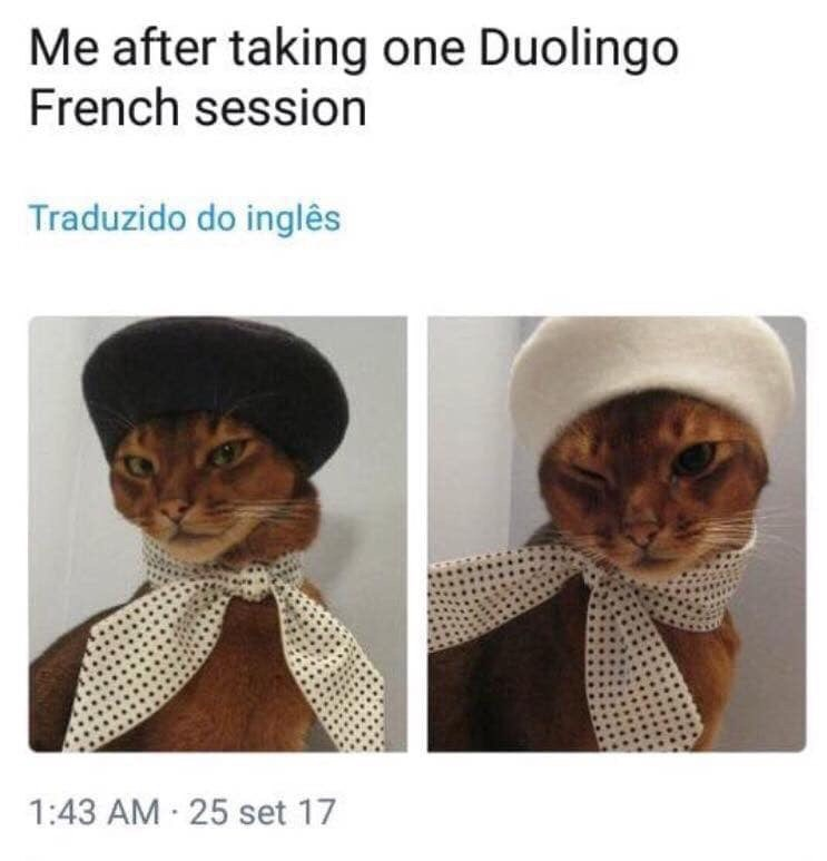 "Meme - ""Me after taking one Duolingo French session"""