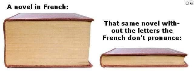 Product - m A novel in French: That same novel with out the letters the French don't pronunce: