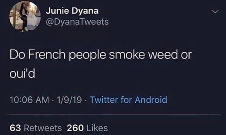 Text - Junie Dyana @DyanaTweets Do French people smoke weed or oui'd 10:06 AM 1/9/19 Twitter for Android 63 Retweets 260 Likes