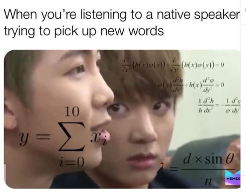 Face - When you're listening to a native speaker trying to pick up new words (x)o))((x)o())-0 dy Id h de Id'h 10 y= dx sin i=0 HEHES
