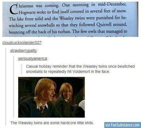 Text - hristmas coming. One morning in mid-December, was Hogwarts woke to find itself covered in several feet of snow The lake froze solid and the Weasley twins were punished for be- witching several snowballs so that they followed Quirrell around bouncing off the back of his turban. The few owls that managed t to cloudcuckoolander527 strawberrypatty seriouslyamerica Casual holiday reminder that the Weasley twins once bewitched snowballs to repeatedly hit Voldemort in the face The Weasley twins