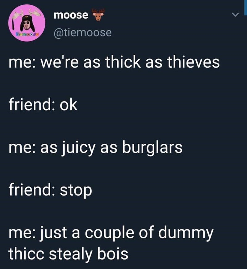 Text - moose L @tiemoose Giemoore me: we're as thick as thieves friend: ok me: as juicy as burglars friend: stop me: just a couple of dummy thicc stealy bois
