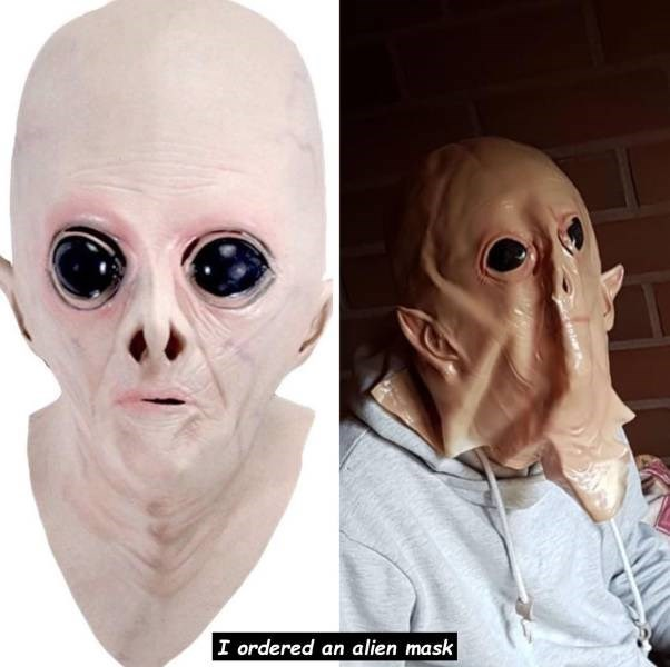 Expectation Vs Reality - Face - I ordered an alien mask