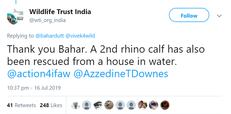 Text - Wildlife Trust India Follow oin Herd @wti_org_india Replying to @bahardutt @vivek4wild Thank you Bahar. A 2nd rhino calf has also been rescued from a house in water. @action4ifaw @AzzedineTDownes 10:37 pm 16 Jul 2019 41 Retweets 248 Likes