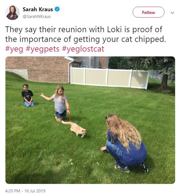 Grass - Sarah Kraus Follow @SarahNKraus They say their reunion with Loki is proof of the importance of getting your cat chipped. #yeg #yegpets #yeglostcat 4:20 PM 16 Jul 2019