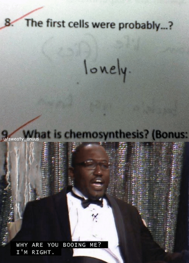 Text - 8 The first cells were probably...? lonely What is chemosynthesis? (Bonus: u/sweaty_anuus WHY ARE YOU BO0ING ME? I'M RIGHT